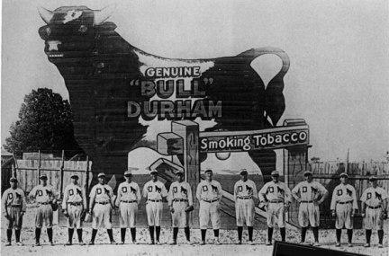 bulls_1913